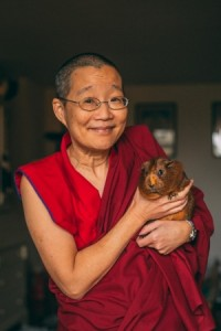 Buddhism and Social Justice